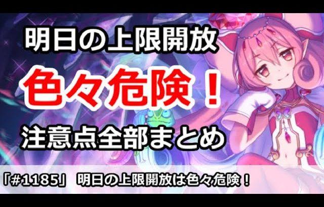 【プリコネ】明日の上限解放は色々危険!注意点全部まとめ【プリンセスコネクト!】